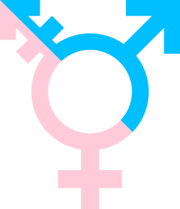 Image of a the transgender symbol, combining the circle and arrow symbols for male and female.